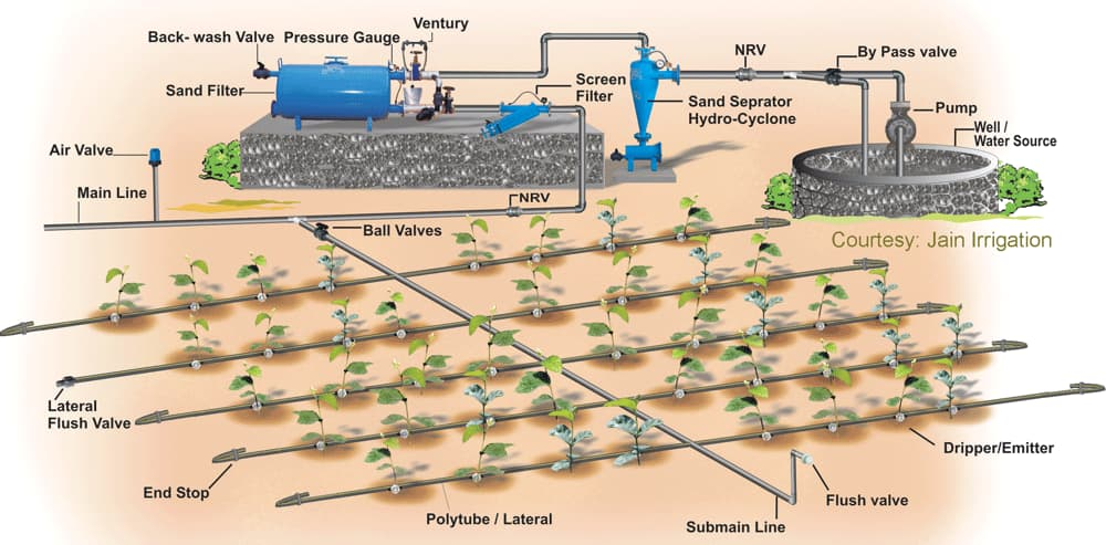 Drip irrigation example